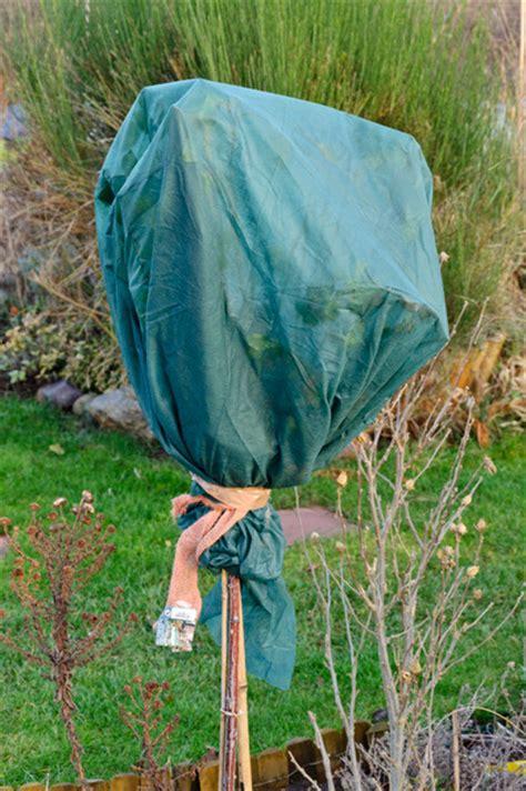 Abdeckung Pflanzen Winter by Winterschutz F 252 R Gartenzauber