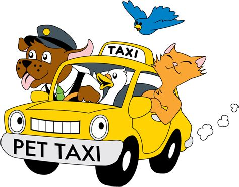 puppy transport service gt gt gt pet transport taxi air ground travel personal custom service