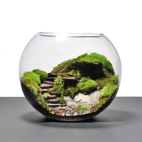 Mini Terrarium Selber Bauen 2156 by 220 Ber 40 Vorschl 228 Ge Wie Sie Ein Terrarium Selber Bauen