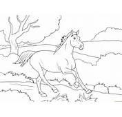 Dibujos Para Colorear De Caballos 5 Dibujar Car Memes