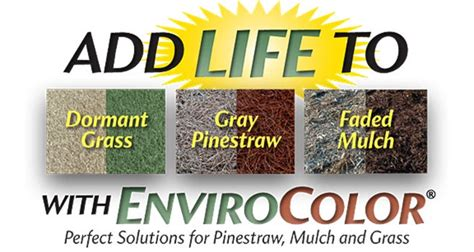 get envirocolor at home depot garden