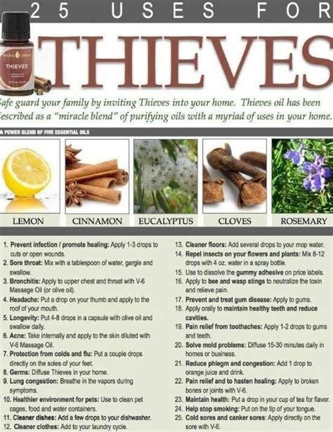 using thieves in your kitchen the oily home companion 52 best essential oil thieves images on pinterest health