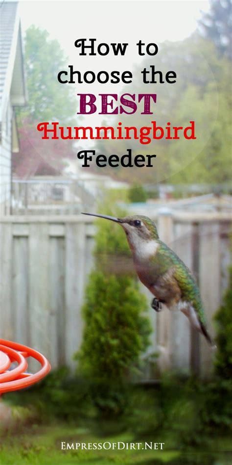 82 best hummingbird love images on pinterest butterflies