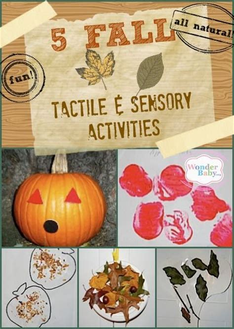 the multi sensory reminiscence activity book 52 weekly session plans for working with adults books 25 best ideas about tactile activities on
