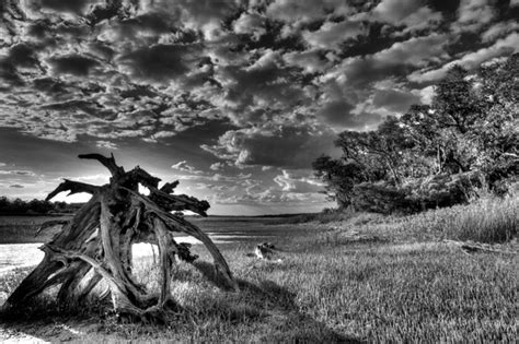 black and white landscape photography 29 free wallpaper