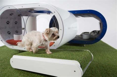 dog dream house that s too much samsung builds 30k dog dreamhouse geekologie