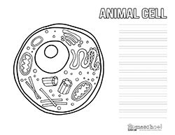 animal cell clipart worksheets homeschool clipart