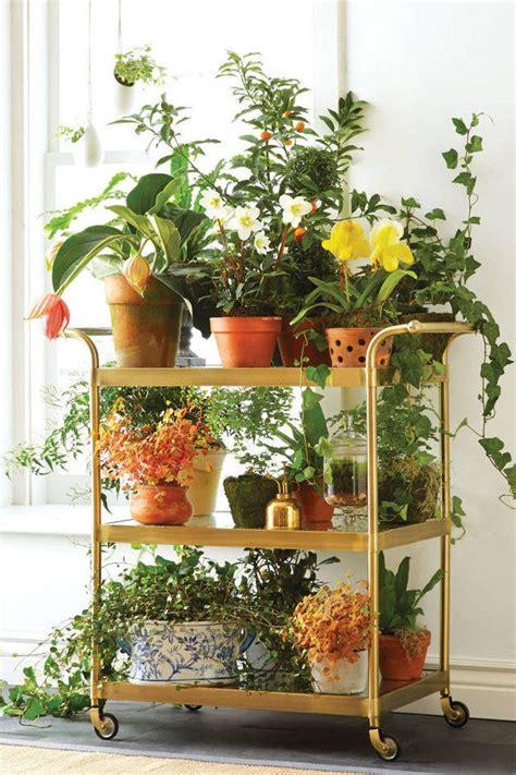 cool indoor gardening ideas photograph creative indoor ver 25 best ideas about indoor plant stands on pinterest