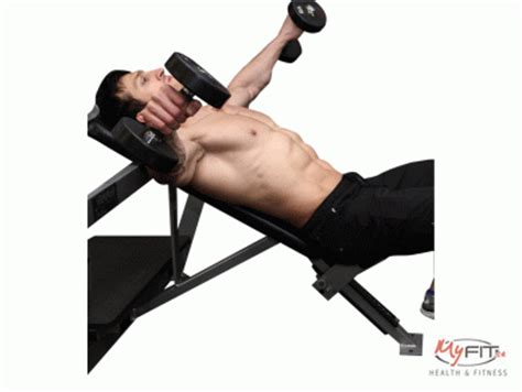 bent over lateral raises on incline bench dumbbell incline lateral raises exercise myfit