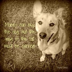 sayings about dogs quotes about owners quotesgram