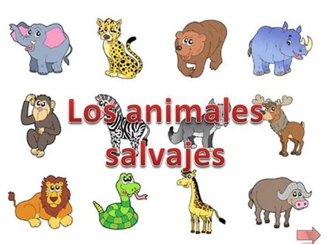 imagenes de animales salvajes para niños animales salvajes para ni 241 os imagui
