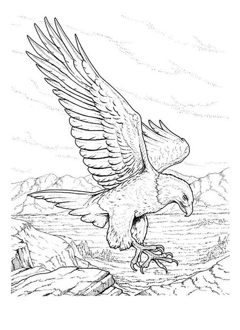Free Printable Bald Eagle Coloring Pages For Kids Bald Eagle Coloring Pages