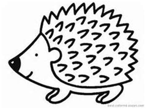 1000 images about hedgehogs on pinterest jan brett