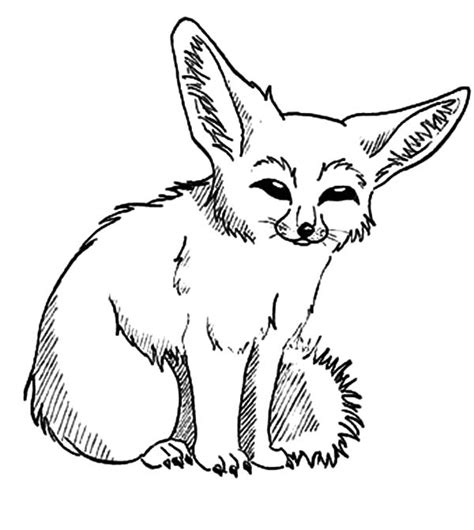 coloring pages fennec fox fennec fox clipart black and white pencil and in color