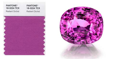 color of the year 2014 a colorful the 2014 pantone colour of the year is