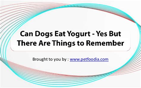 can dogs eat spam can dogs eat yogurt yes but there are things to remember