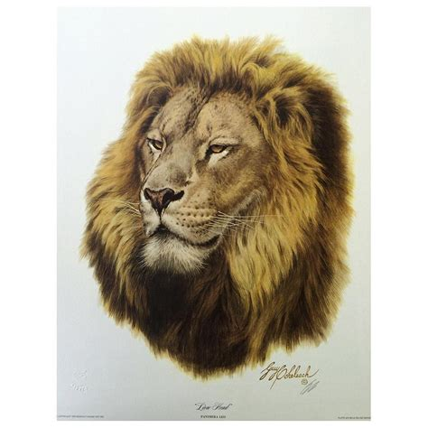 lion print print lion by guy coheleach big cat rescue