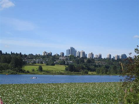 buy house burnaby real estate in burnaby bc burnaby homes for sale royal lepage