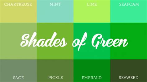 green colors names mesmerizing impact of green colored brand identity