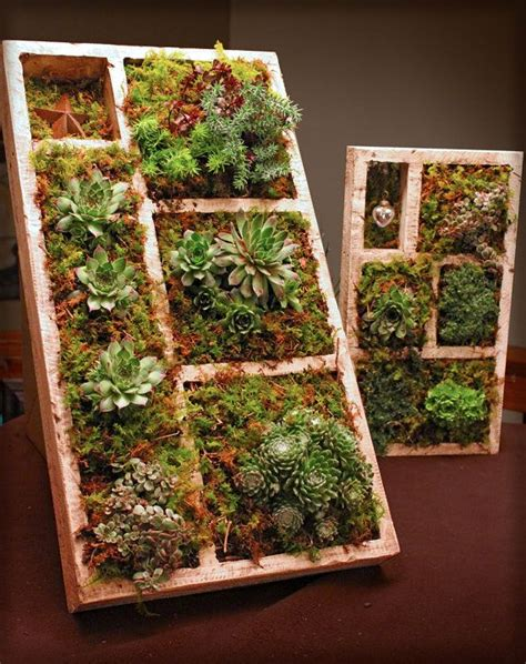 succulent planter box succulent planter box wedding bells pinterest
