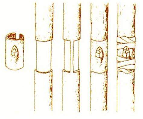 muscolo sedere ernia disco intervento in diretta a spinal disc