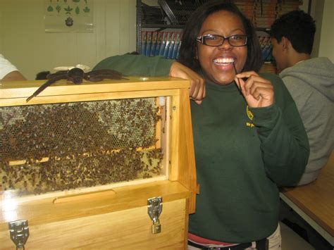 High School Background Check Wolgast Tree Farm Apiary Visits Barack Obama Green Charter High School