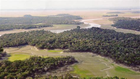 Borneo Langka danau sentarum danau unik dan langka di jantung borneo indonesia