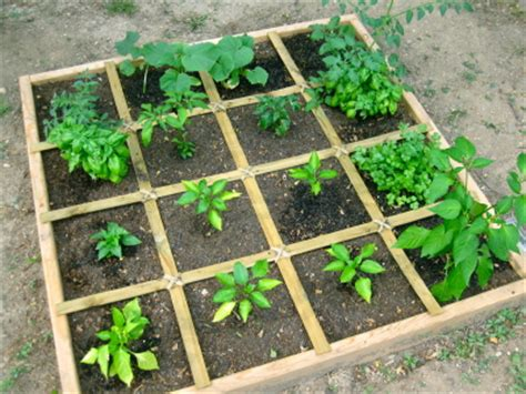 build a square foot garden wired how to wiki divas do garden a beginner s guide to organizing a small