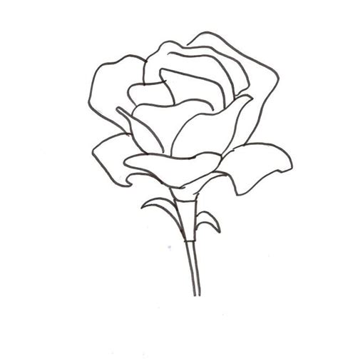cool coloring pages of flowers 75 best coloring pages images on coloring