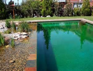 Natural Pool by 19 Incredible Natural Swimming Pools