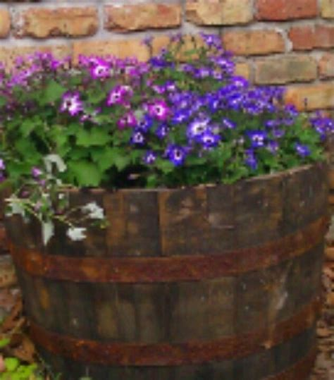 whiskey barrel planter lowes they the cutest whiskey barrel planters