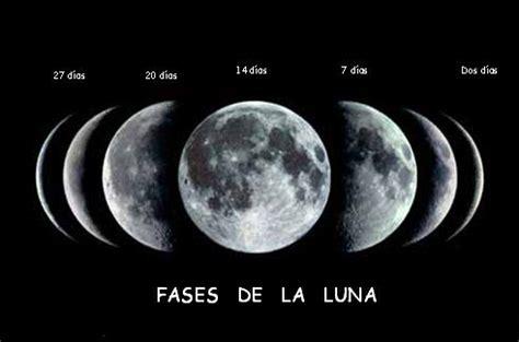 fases de la luna las fases de la luna science pinterest
