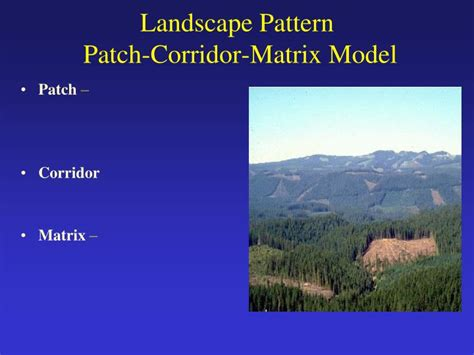 Landscape Attributes Definition Ppt Habitat Interspersion Leopold S Of