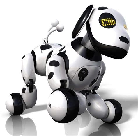 how to a zoomer zoomer puppy by spin master the robots web site