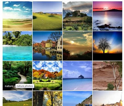 photo gallery grid gallery wordpress plugin ready