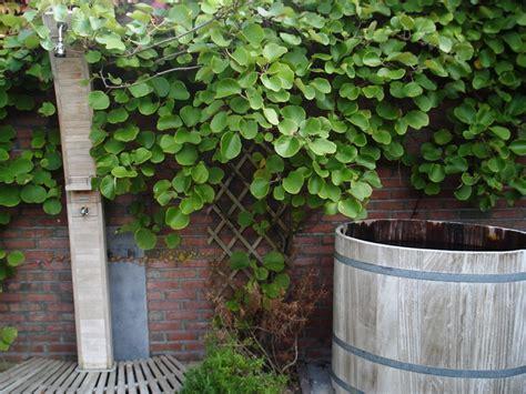 lotus wellness kuuroord in kortrijk lotus wellness exclusive wellness