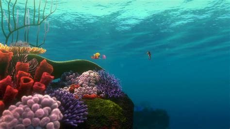 Finding Great Finding Nemo Finding Nemo Image 3562358 Fanpop