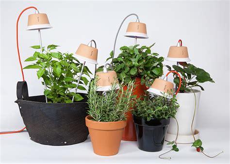 bulbo grow vegetables indoors  led lights