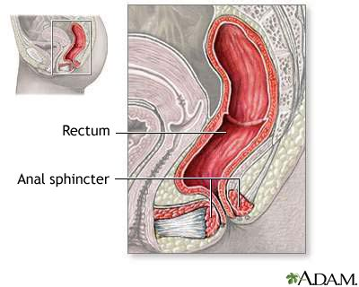 anal after c section inflatable artificial sphincter penn state hershey