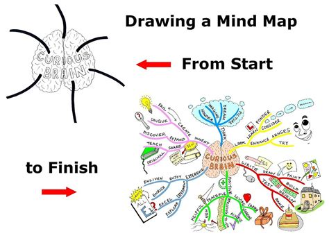 draw a mind map rising 2 17 13 2 24 13
