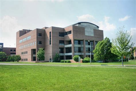 Best Mba Colleges In Michigan by Michigan State Great Value Colleges