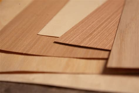 How To Make Paper With Wood - paper zone inspire design create wood veneer paper is here