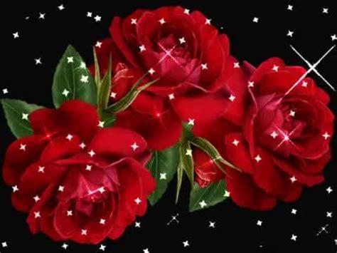 las mas hermosas fotos de rosas con poemas de amor videos de iguala rosas hermosas youtube