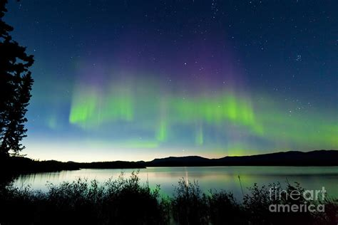 northern lights in summer summer northern lights lake laberge photograph
