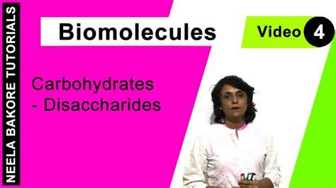 carbohydrates disaccharides biomolecules carbohydrates disaccharides
