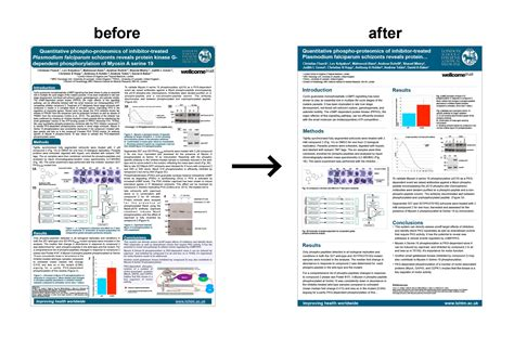 scientific poster template scientific poster template free 5 clear and best
