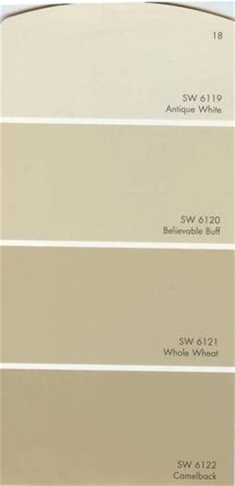 17 best images about sherwin williams believable bluff paint on decor accent walls