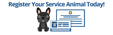 how to get your registered as a service psychiatric service service certifications