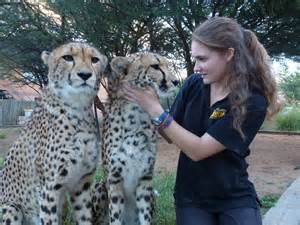 Wildlife biologist in the field information on wildlife biologist and