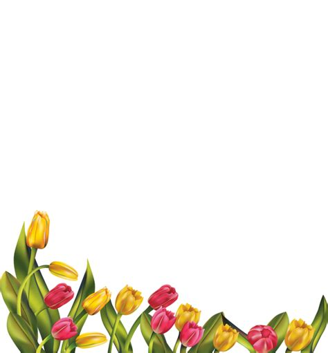 border design flower yellow pin by shaheen shafique on elegant boards frames